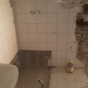 umbau-wc